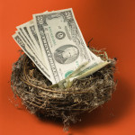 Money in Nest on Red Background